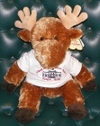 Stuffed Moose for Sale to Benefit Cancer Center