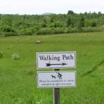 White House Inn - Walking Path